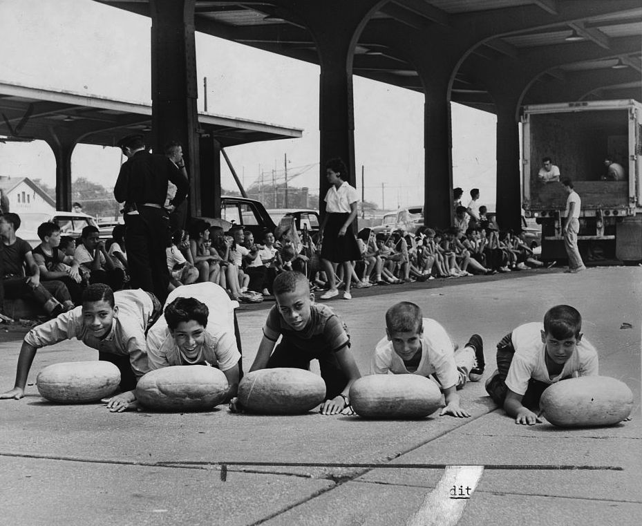 """BOYS PREPARING FOR WATERMELON RACE - BROOKLYN TERMINAL MARKET"" - PHYLLIS TWACHTMAN, LIBRARY OF CONGRESS"