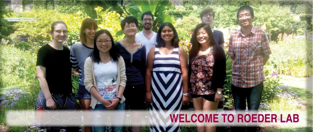 Roeder Lab Web Banner August 2015