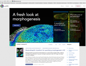 MorphoGraphX eLife (May 2015)