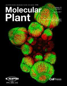 Molecular Plant (April 2017)