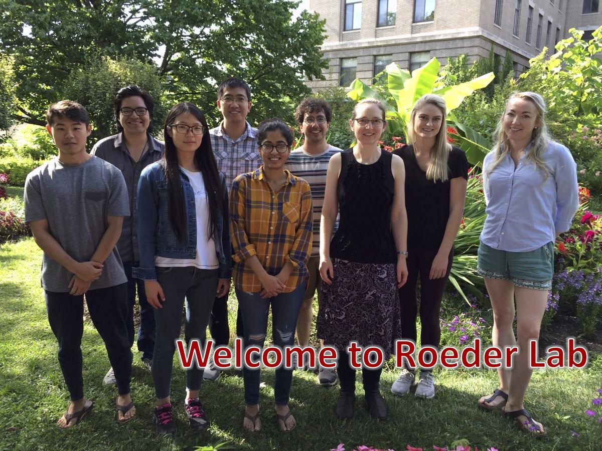 Roeder Lab Web Banner