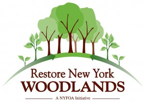 restoreNYwoodlands_rgb large