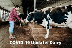 COVID-19 Dairy Updates