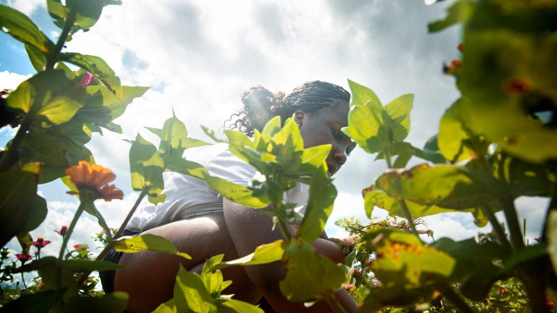 Woman working in garden on sunny day