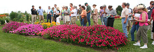 Viewing flower beds at 2009 Cornell Floriculture Field Day