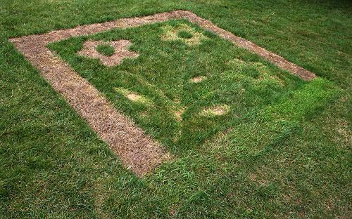 Ephemeral grass art on the Ag Quad