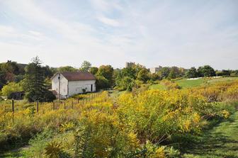 Dilmun Hill student organic farm.