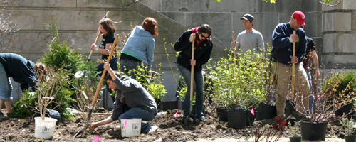 'Urban Eden' students install planting in front of Mann Library