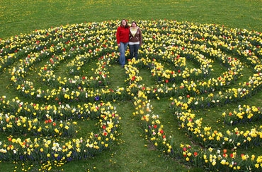Flower bulb labyrinth at Bluegrass Lane