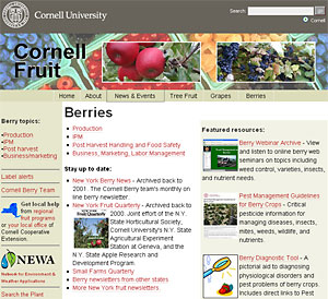 New berry portal of the Cornell Fruit website.
