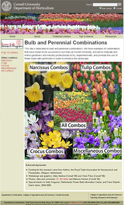 Bulb-perennial combination homepage
