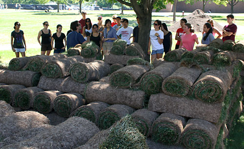 Art of Horticulture students get a quick lesson on sod from turf specialist Frank Rossi.