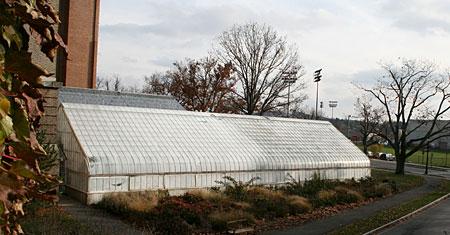 Liberty Hyde Bailey Conservatory, Cornell University, November 15, 2010