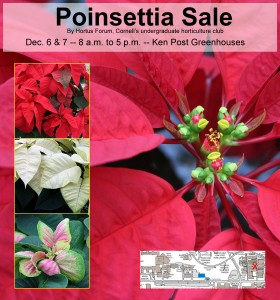 Bring color to your holidays while you support Hortus Forum.  (Click image to enlarge.)