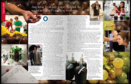 Teaching winery in Ezra magazine.
