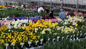 NAFWA members view Flower Bulb Research Program projects.