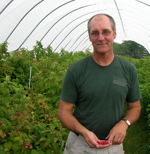 Northern New York grower Rob Hastings holds a handful of raspberries grown in one of his Rivermede Farms high tunnels.