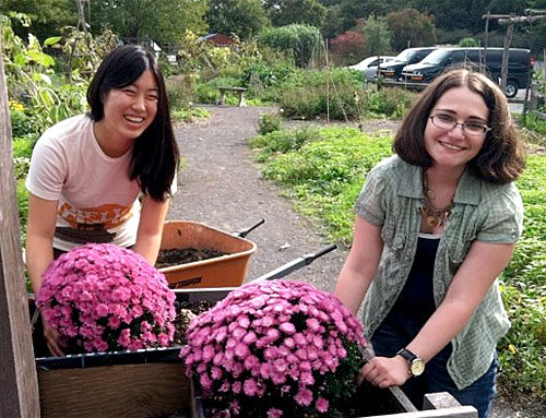 HORT 1110 students plant mums at Ithaca Children's Garden.