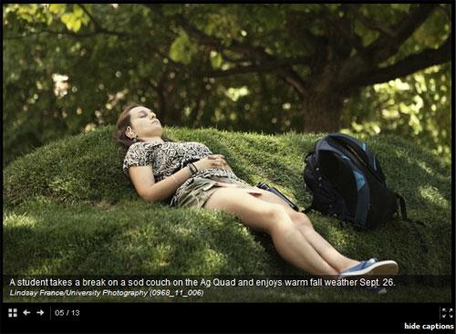 picture_cornell_sofa