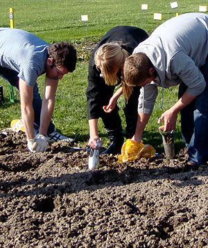 Planting bulbs at Bluegrass Lane.