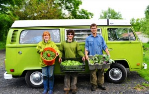 Don't miss the bus! Apply for student market garden manager today.