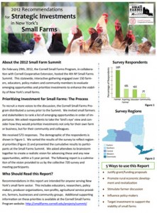 2012 Recommendations for Strategic Investments in New York's Small Farms
