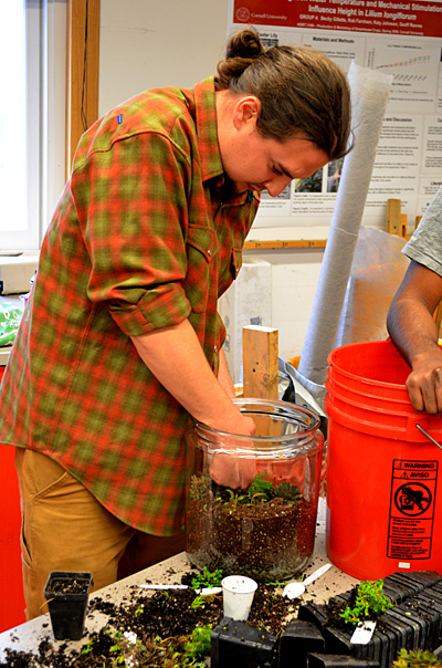 Horticulture graduate student Miles Schwartz-Sax works on a terrarium at the SoHo-organized Horticulture Outreach Day