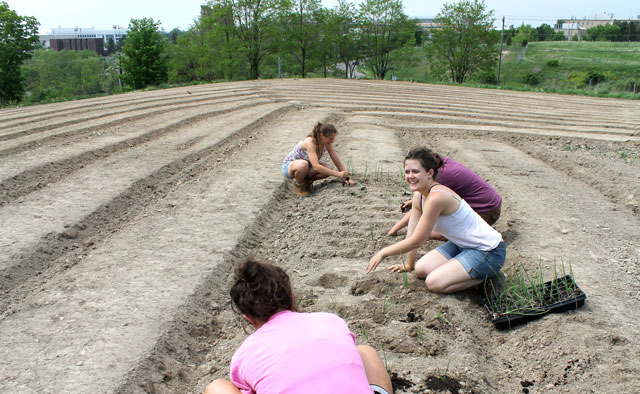 Student farm managers plant newly constructed raised beds at Dilmun Hill.
