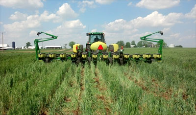 No-till planting into a multi-species cover crop (photo: Jim LaGioia, USDA-NRCS, Lyons)