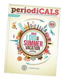 periodcals cover