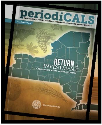 PeriodiCALS cover
