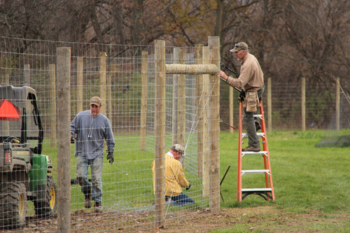 Staff install deer fence at Thompson Research Farm. Photo: Anja Timm.