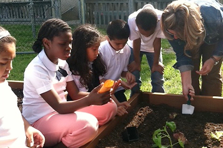 A new study reports that children in schools with vegetable gardens got 10 minutes more of exercise than before their schools had gardens.