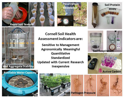 soil health test compositex400