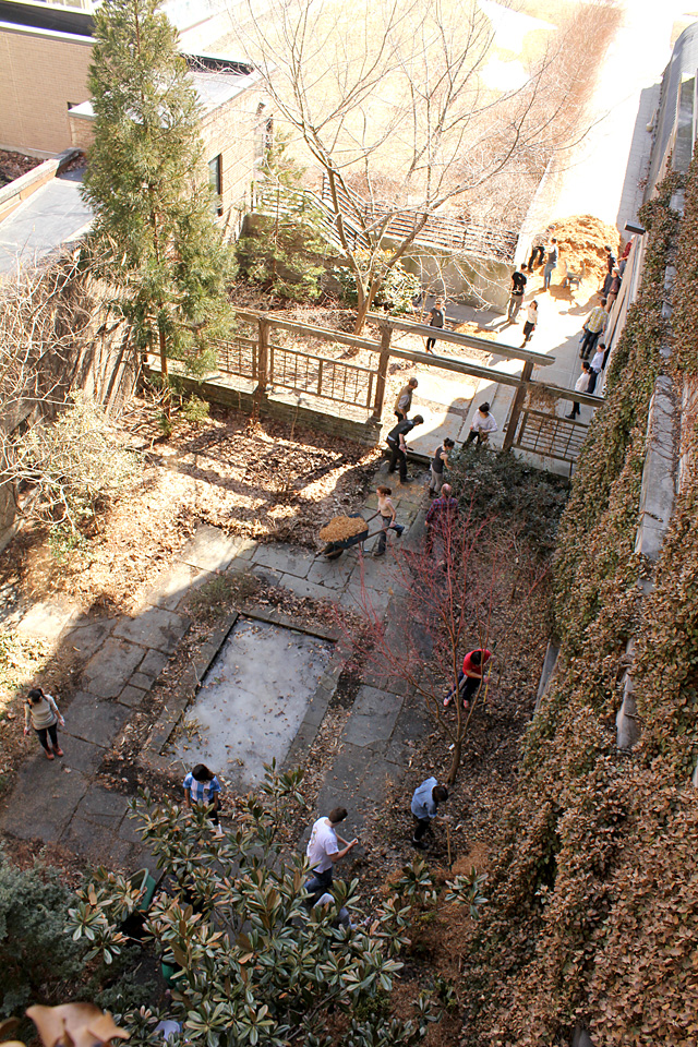 Urban Eden students clean up the 'hidden garden' outside Plant Science Building