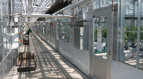 nysaes greenhouse interior