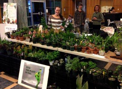 hofo-plant-sale