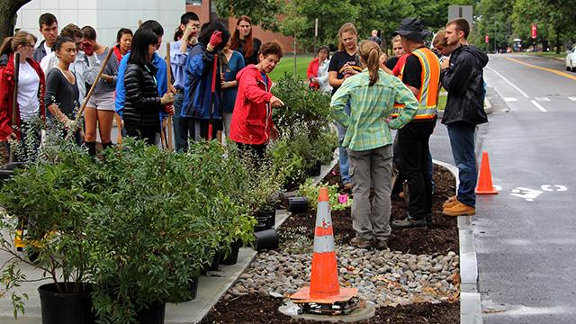 Bassuk instructs students before planting.