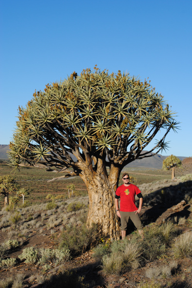 Miles with Aloidendron dichotoma