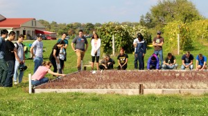 Justine Vanden Heuvel introduces HORT 1101 students to the new cranberry planting at Cornell Orchards.