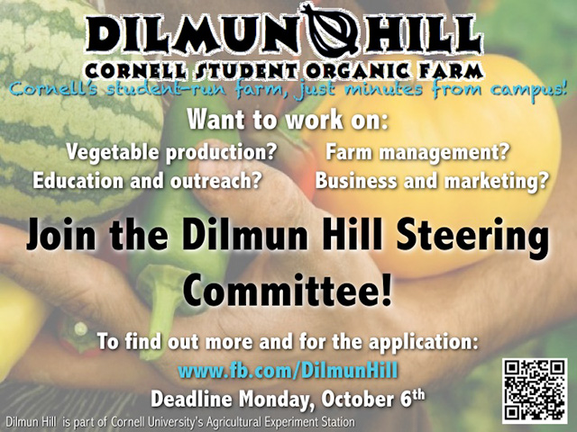 dilmun hill steering committee flyer