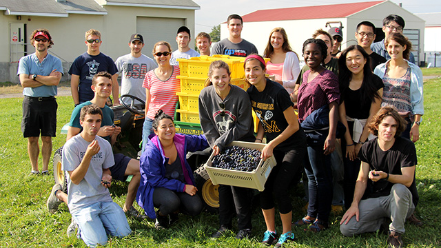 HORT 1101 students with grape harvest