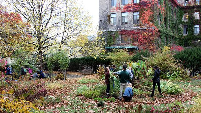 Minns Garden cleanup