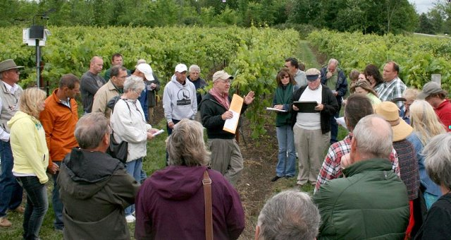 Northern Grapes Project Director Dr. Timothy Martinson speaks about the training system trials during a field day at Coyote Moon Vineyards in Clayton, N.Y.