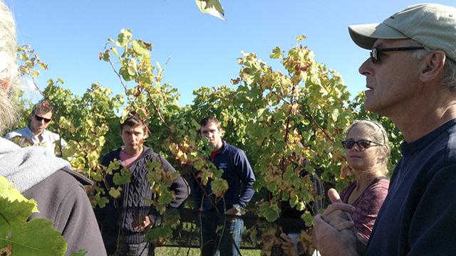Barbara Shinn and David Paige (right) talk with students at a Shinn Estate Vineyards.