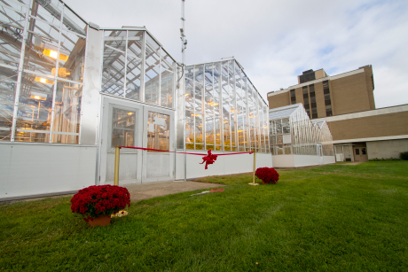 Barton Laboratory Greenhouse