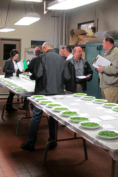 Processor and seed company representatives sample frozen peas at NYSAES 'cuttng'.
