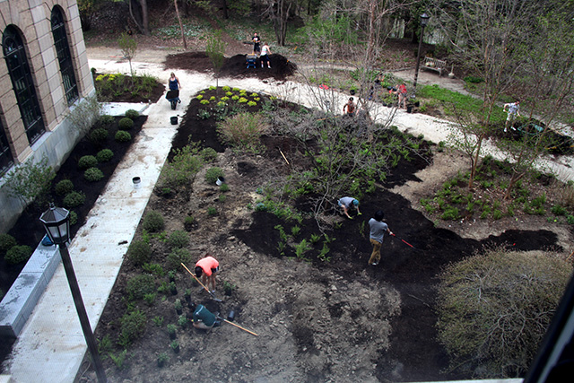 Deans Garden from above.