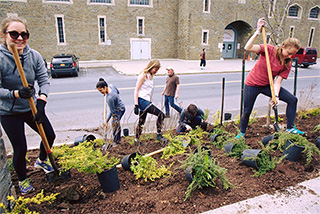 Urban Eden students plant along Garden Avenue outside Teagle Hall.