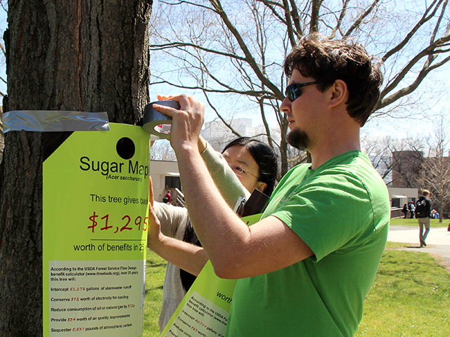Schwartz-Sax hangs tag on tree showing the value of its ecosystem services on Arbor Day.